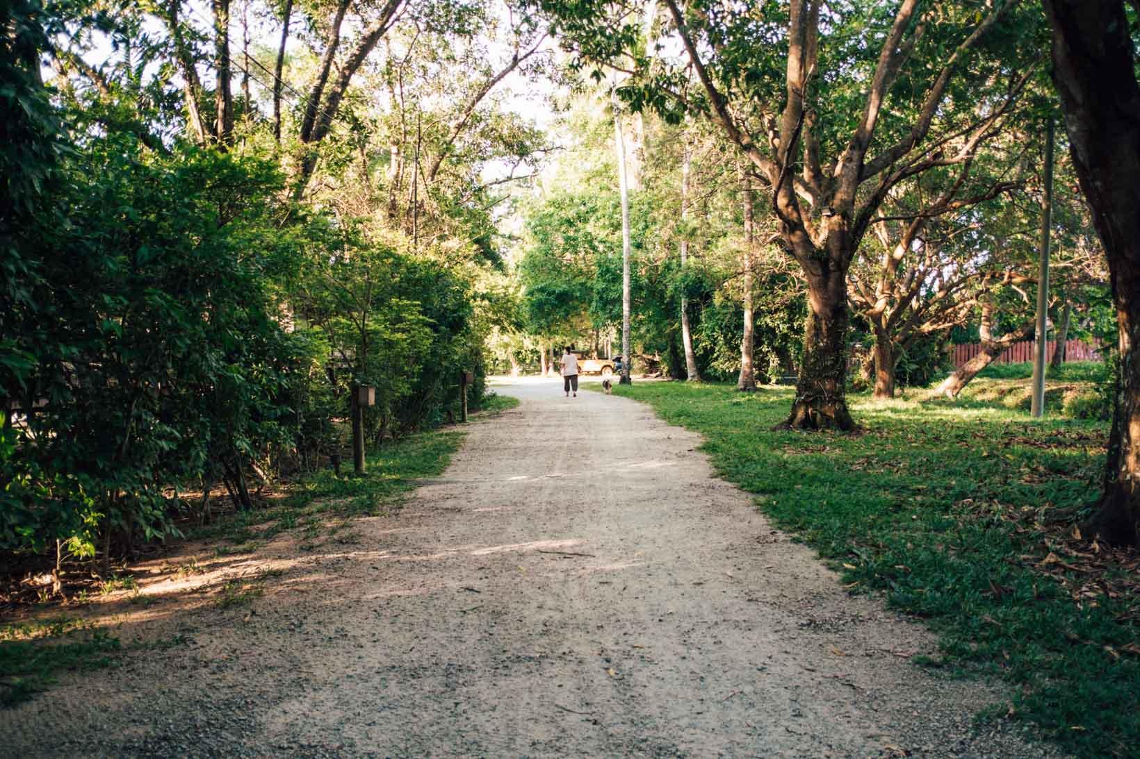 Strada di casa al Langkawi Lassie