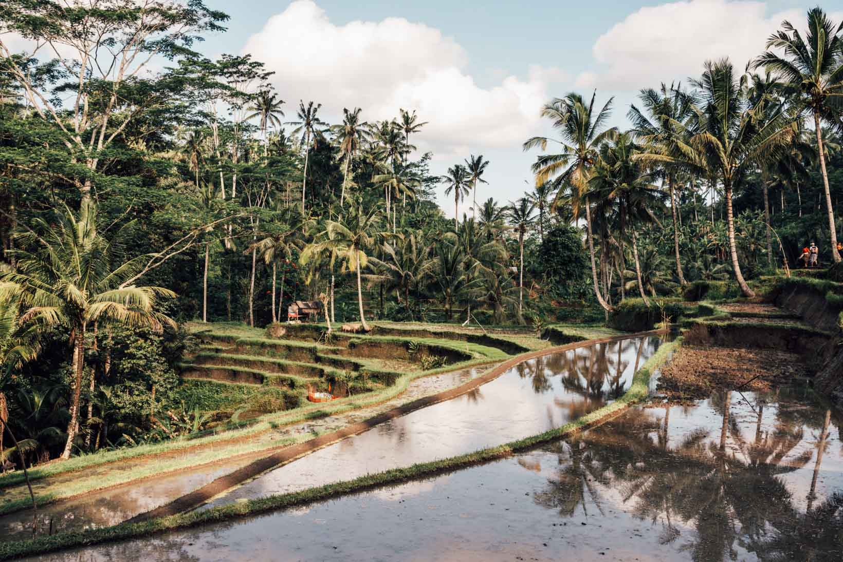 Ubud cosa vedere Pura Gunung Kawi