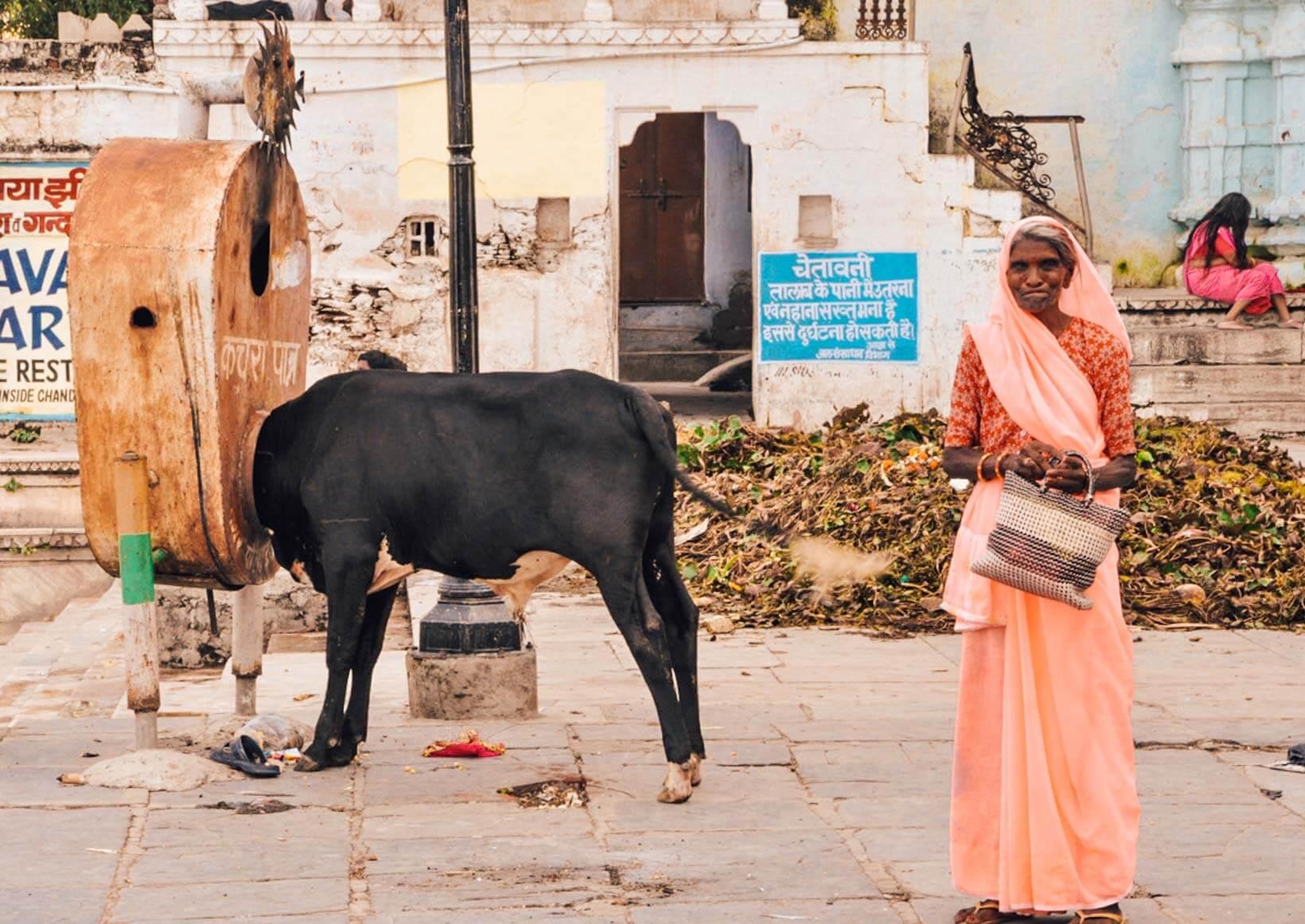 Rajasthan luoghi di interesse Udaipur
