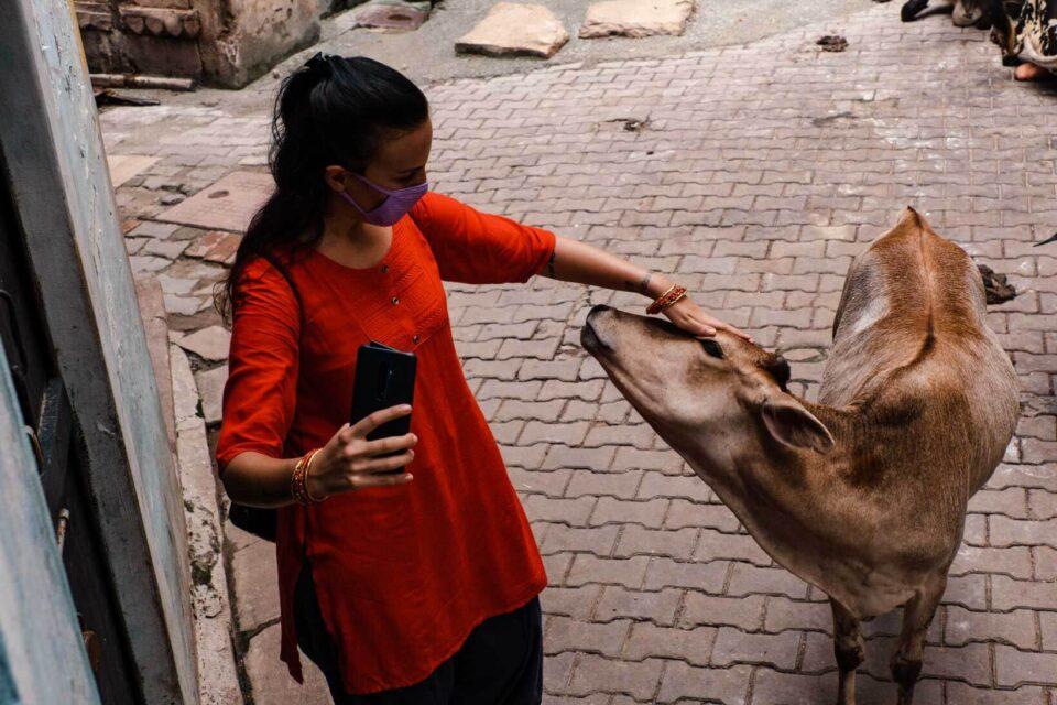 Giulia con una mucca Varanasi
